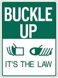 buckle-up.jpg