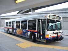 the-bus.jpg